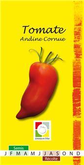 Tomate des andes AB Bio